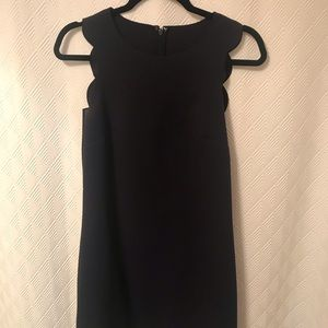 Navy scalloped hem j crew factory dress